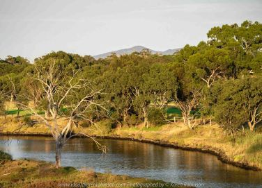 Werribee South, Victoria - Australia 'Werribee River K Road' Photograph by Karen Robinson February 2019 Comments - A morning out with hubby and me with granddaughter and daughter photographing rare sighting of an Eastern Osprey water bird.