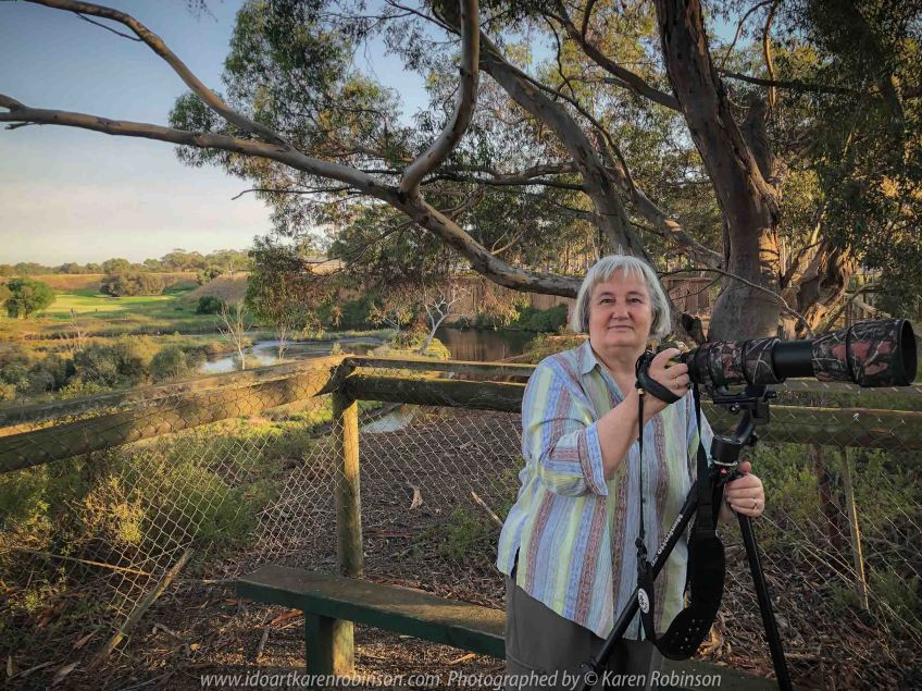 Werribee South, Victoria - Australia 'Werribee River K Road' Photograph by Karen Robinson February 2019 Comments - A morning out with hubby and me with granddaughter and daughter photographing rare sighting of an Eastern Osprey water bird. Photograph featuring Karen Robinson Photographer.