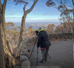 Mount Macedon, Victoria - Australia 'Duneira Heritage Garden' Photographed by Karen Robinson April 2019 Comments - A beautiful Autumn day with hubby at these magnificent gardens where tall trees are the dominating feature. Photograph featuring Karen Robinson Photographer taking photos of the view from Major Mitchell Lookout.