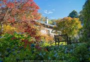 Mount Macedon, Victoria - Australia 'Duneira Heritage Garden' Photographed by Karen Robinson April 2019 Comments - A beautiful Autumn day with hubby at these magnificent gardens where tall trees are the dominating feature. Photograph featuring Main House and surrounding garden.