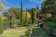 Mount Macedon, Victoria - Australia 'Duneira Heritage Garden' Photographed by Karen Robinson April 2019 Comments - A beautiful Autumn day with hubby at these magnificent gardens where tall trees are the dominating feature. Photograph featuring Secret Garden area.