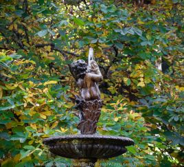 Mount Macedon, Victoria - Australia 'Duneira Heritage Garden' Photographed by Karen Robinson April 2019 Comments - A beautiful Autumn day with hubby at these magnificent gardens where tall trees are the dominating feature. Photograph featuring water fountain.