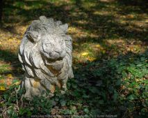 Mount Macedon, Victoria - Australia 'Duneira Heritage Garden' Photographed by Karen Robinson April 2019 Comments - A beautiful Autumn day with hubby at these magnificent gardens where tall trees are the dominating feature. Photograph featuring Lion Statue.