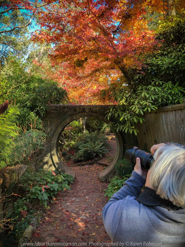Victoria - Australia 'Forest Glade Gardens' Photographed by Karen Robinson May 2019 Comments - Autumn visit to one of Australia's most beautiful private gardens.