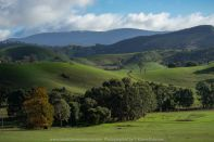 Strath Creek, Victoria - Australia 'Autumn Drive' Photographed by Karen Robinson May 2019 Comments - Panoramic Views of this beautiful region.