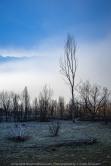 Devils River, Victoria - Australia 'Misty Lake Eildon Region' Photographed by Karen Robinson June 2019 Comments - Misty early morning river bed landscape scenes.