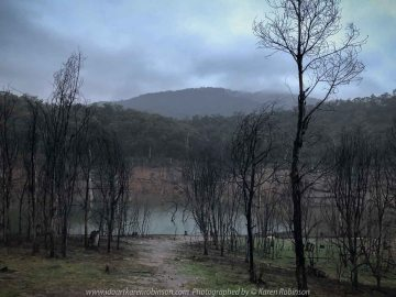 Eildon, Victoria - Australia 'Jerusalem Creek and Lake Eildon Region' Photographed by Karen Robinson July 2019 Comments: Rainy winter morning photographing Lake Eildon Region. Photograph featuring Jerusalem Creek area of Lake Eildon Region.