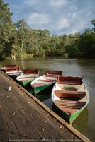 Kew, Victoria - Australia 'Studley Park' Photographed by Karen Robinson June 2019 Comments - Picnic Area at Studley Park. Photograph featuring boathouse boats on the Yarra River.