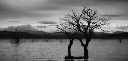 Bonnie Doon, Victoria - Australia 'Lake Eildon Region' Photographed by Karen Robinson July 2019 Comments: Lakeside views across Lake Eildon towards Mount Buller.