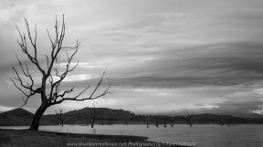 Bonnie Doon, Victoria - Australia 'Lake Eildon Region' Photographed by Karen Robinson July 2019 Comments: Lakeside views across Lake Eildon towards Mount Bulla.