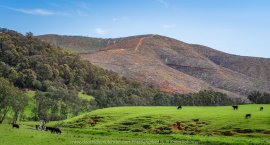 Buffalo River, Victoria -Australia 'Buffalo River Road' Photographed by Karen Robinson Sept 2019 Comments - During out driving trip up to Bright we stopped at scenic locations on the way to photograph. Photograph features two views of mountains sides, one covered in Australian Bush and the other completely logged out, stripped bare of its natural vegetation.