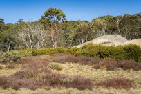 Mount Buffalo, Victoria - Australia 'Mount Buffalo Road' Photographed by Karen Robinson September 2019 Comments - Beautiful Spring day driving along Mount Buffalo Road photographing magnificent regional scenic views.