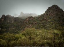 Grampians National Park, Victoria - Australia 'Region' Photographed by Karen Robinson November 2019 Comments: Featuring photographs within Mafeking along Grampians Road.