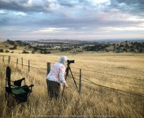 High Camp, Victoria - Australia 'Granite Boulder Region' Photographed by Karen Robinson December 2019 Comments: Beautiful early morning around sunrise in an area that features many giant granite boulders. Photographer Karen Robinson setting up shot of sunrise across the landscape.