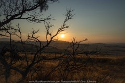 High Camp, Victoria - Australia 'Sunset on Lancefield-Pyanlong Road' Photographed by Karen Robinson December 2019 Comments: Early summer evening taking photographs of the Sunset. www.idoartkarenrobinson.com