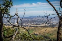 Warrak, Victoria - Australia 'Langi Ghiran State Park Region' Photographed by Karen Robinson November 2019 Comment - Langi Ghiran Reservoir Lookout.