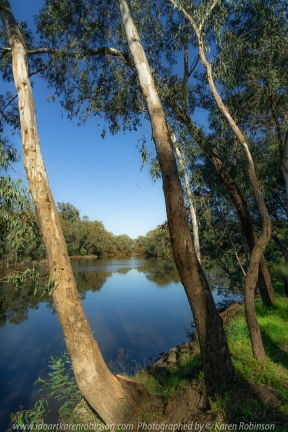 Seymour, Victoria - Australia 'Goulbourn River' Photographed by Karen Robinson May 2020 Comments: Family day with daughter, granddaughter, hubby and me fishing and photographing on a beautiful autumn day beside the Goulburn River.