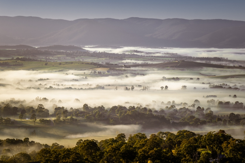 Yarra Glen, Victoria - Australia 'Winter Sunrise at Skyline Road' Photographed by Karen Robinson Jun 2020 Comments - A misty early morning looking out over the plains and towards the mountains from Skyline Road.