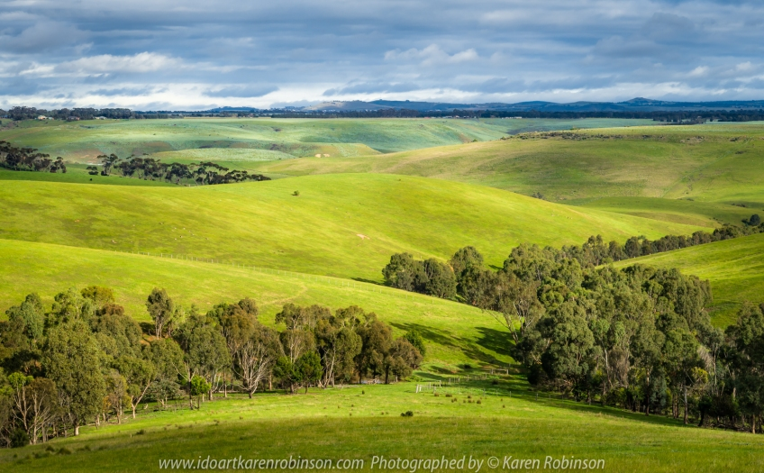 Mickleham, Victoria - Australia 'Views from Old Sydney Road' Photographed by Karen Robinson June 2020 Comments - Cold winter morning photograph lush green fields looking towards Mount Macedon Ranges.