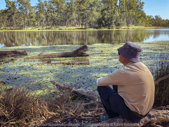 Nagambie, Victoria - Australia 'Tahbilk Wetlands and Tabik Lagoon Summertime' Photographed by Karen Robinson Jan 2021 Comments: Pretty Tabik Lagoon views where plentiful water lilies dressed the lagoon's water edge. Due to kind winter rains, the local vegetation was a healthy green as well. But in some parts of the Lagoon, water levels had lowered so much so that muddy riverbeds were revealed underneath the existing water lilies. Photograph featuring Mark Hubby my dear Sherpa!