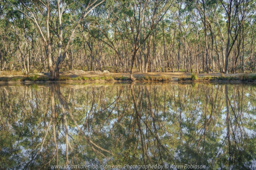 Kimbolton, Victoria - Australia 'Crazy Evely Track Water Hole' Photographed by Karen Robinson February 2021 Comments: Small Waterhole located within beautiful Australian native bush with the magical reflection of its surrounding.