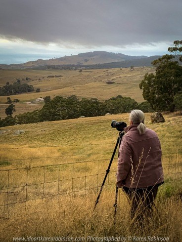 Nulla Vale, Victoria - Australia 'Sunrise Views on Zig Zag Road' Photographed by Mark Robinson April 2021 Comments: Early Autumn morning viewing the sunrise from local dirt track running alongside farming properties. Photograph featuring Karen Robinson Photographer
